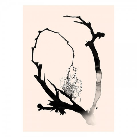 El síndrome de Claus y Lucas Tinta china sobre papel 250 g 56 x 38 cm 420 €